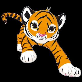 Tiger_Cub_Front_1.png